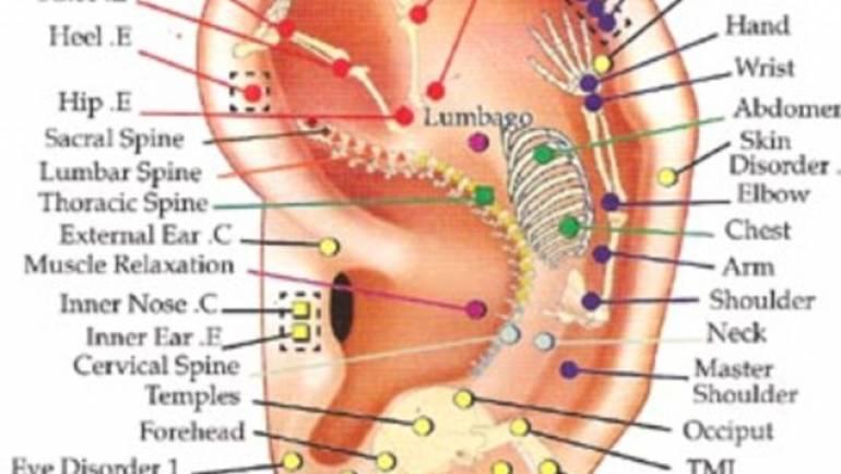 Ear Reflexology (Auriculotherapy)
