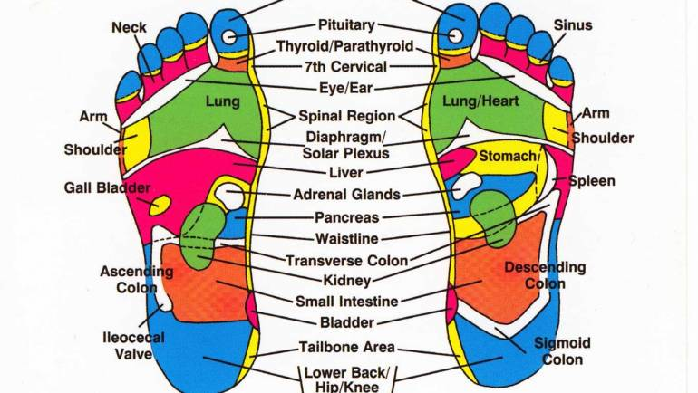 What to expect during a Reflexology session